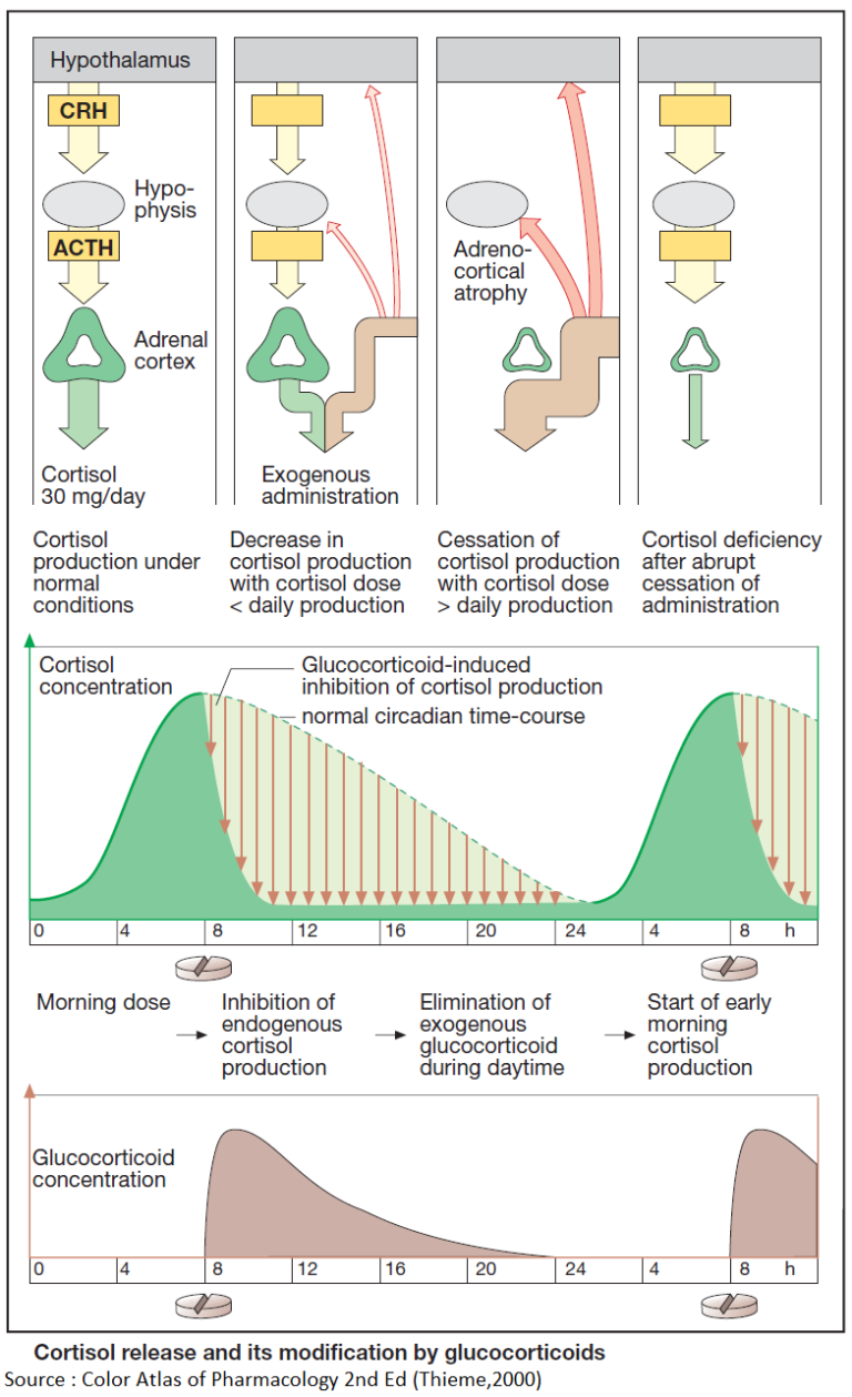 Measures and Regimens for Preventing Drug-Induced Cushing's Syndrome