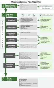 Upper Abdominal Pain in the Emergency Department