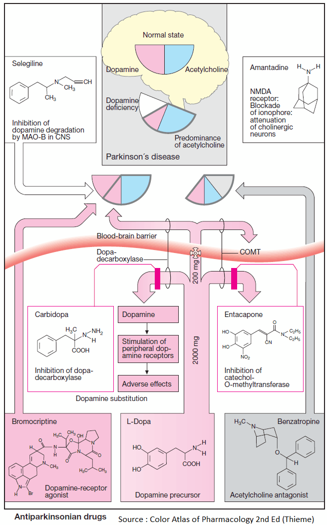 Antiparkinsonian Drugs – Summary