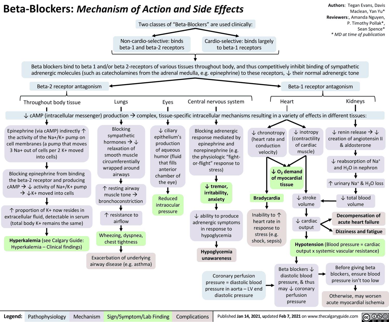 Beta-Sympatholytics (Beta Blockers)