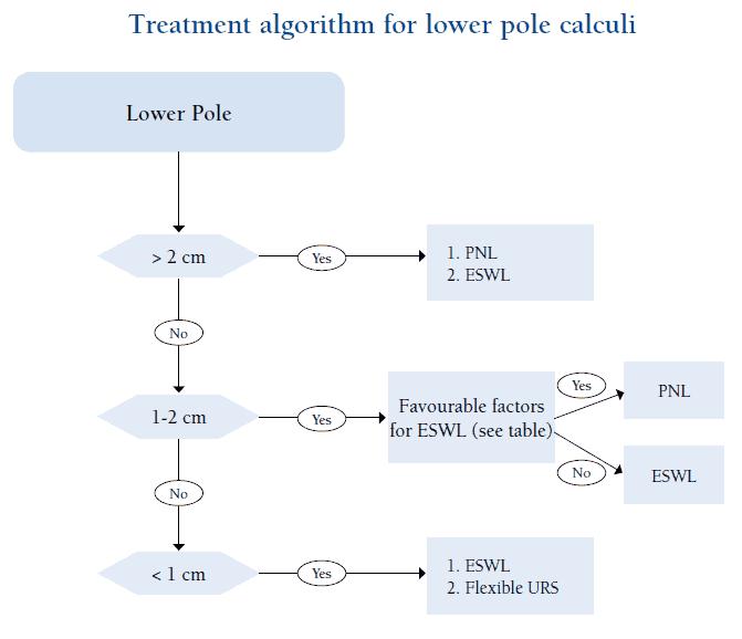Treatment algorithm for lower pole calculi