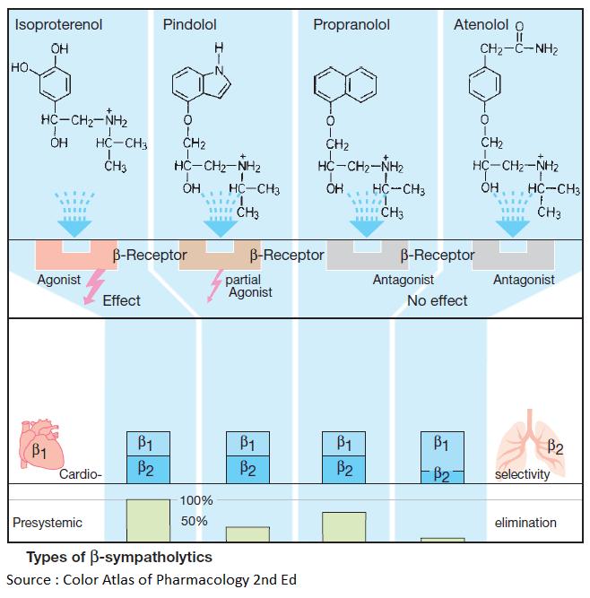 Types of Beta-sympatholytics (Beta Blockers)