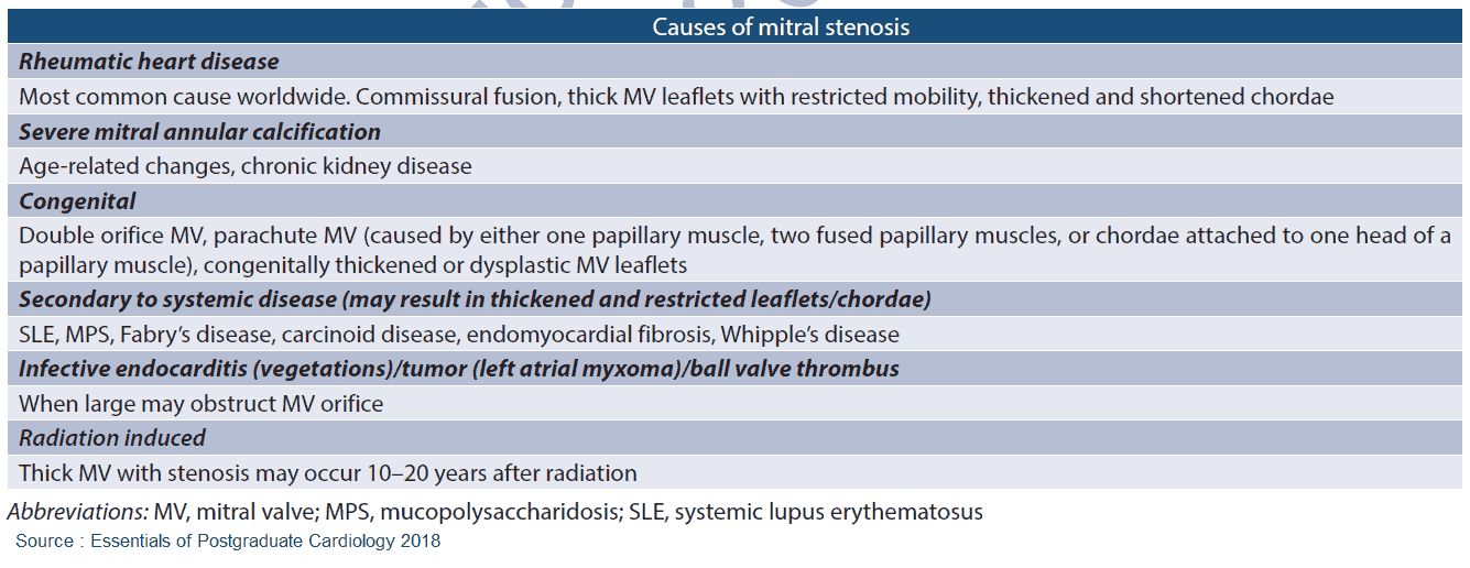 Causes of Mitral Stenosis