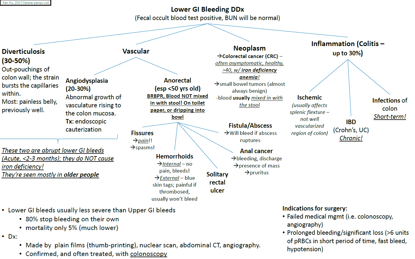 Lower Gastrointestinal Bleeding - Differential Diagnosis