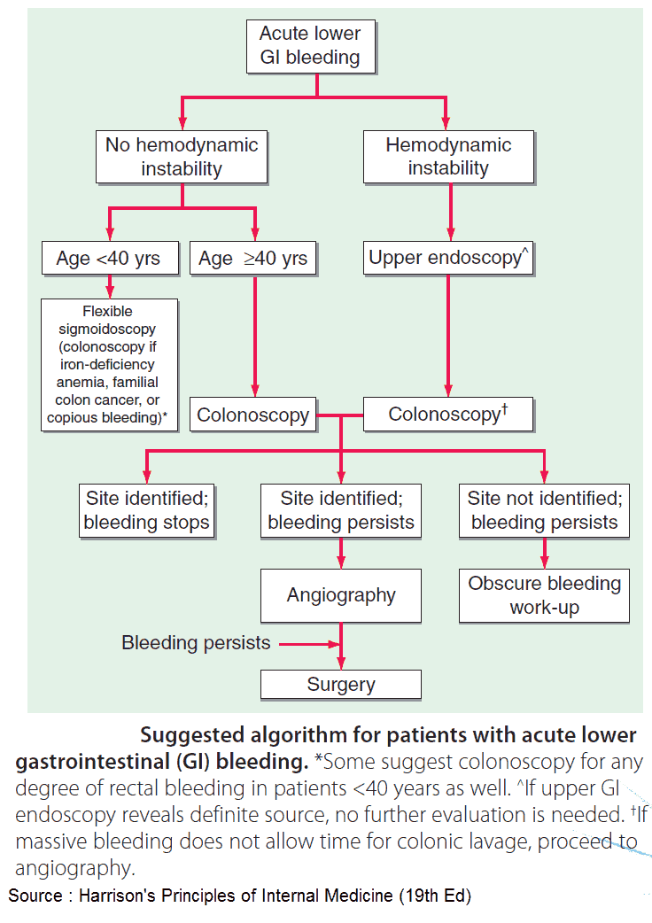 Suggested algorithm for patients with acute lower gastrointestinal (GI) bleeding
