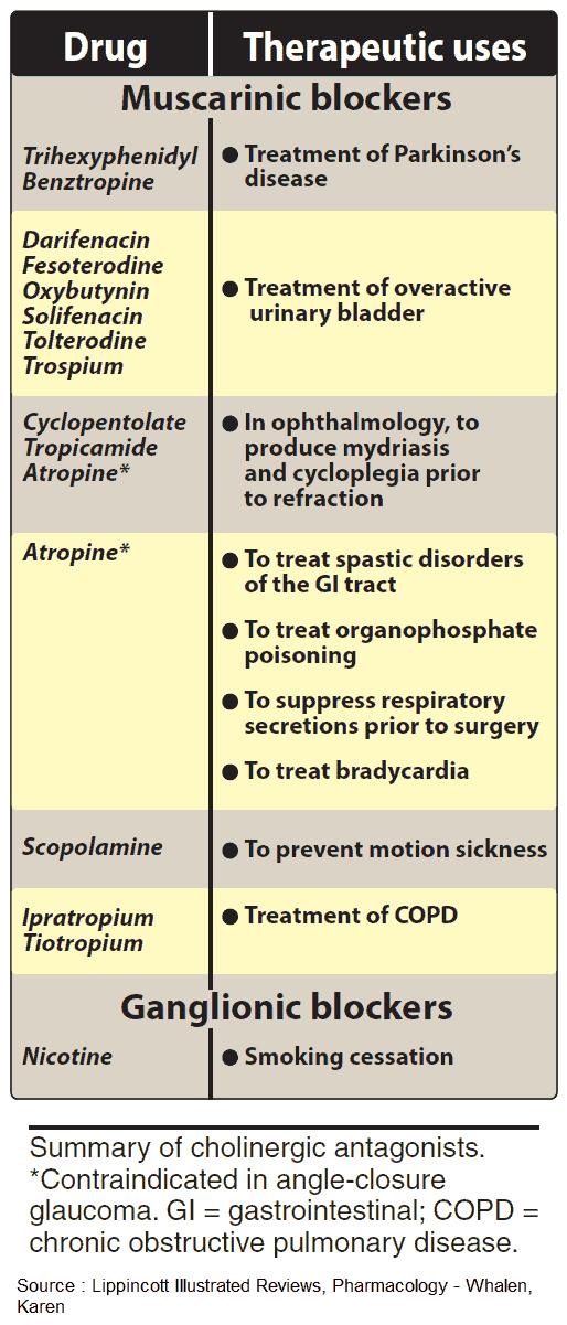 Summary of Cholinergic Antagonists (anticholinergics, parasympatholytics)